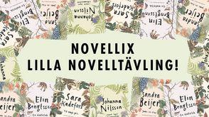 Novellix Lilla Novelltävling – för dig som går i åttan!