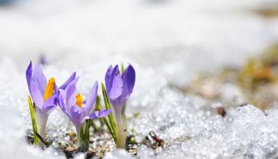 21 roliga aktiviteter till våren